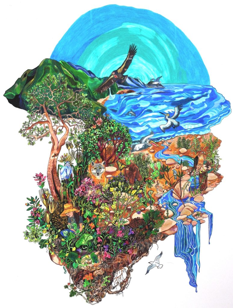 This painting, created by Sarah Holst, depicts the flora, fauna, rivers, waters, humans, and elemental presences of the place within traditional Chumash territory colonially called the Ventura River Watershed.